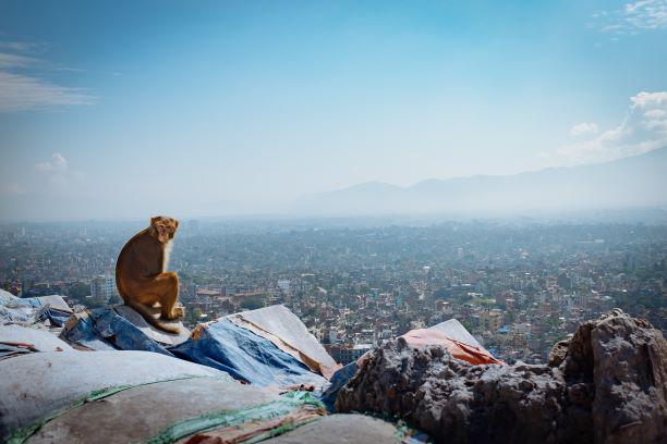 trek from Kathmandu