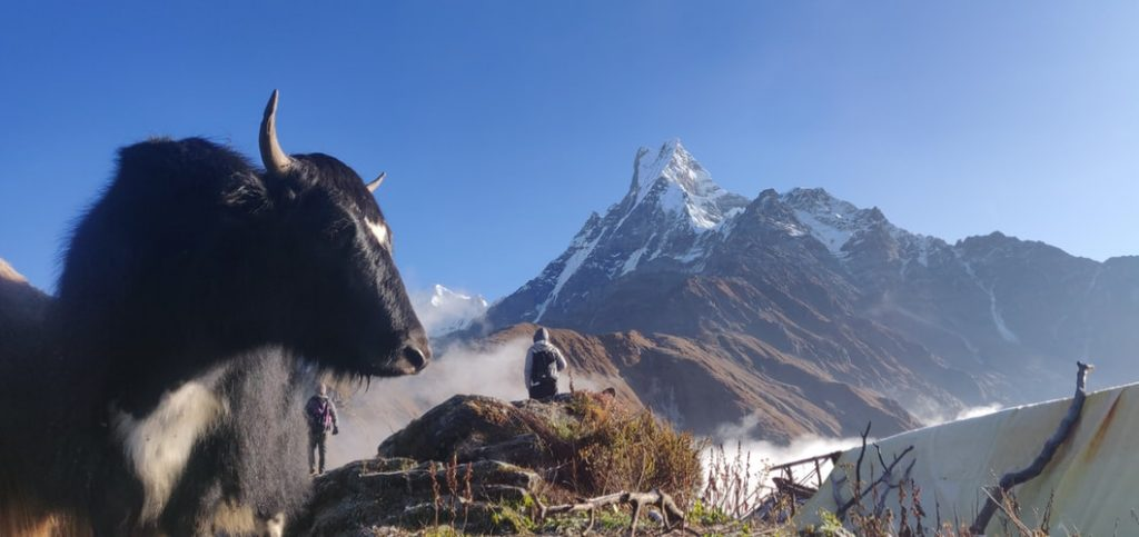 trekking company in Nepal